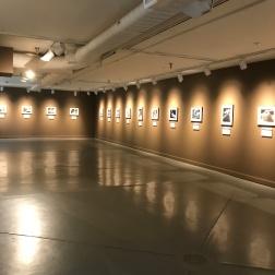 Cheekwood Gallery, Nashville, TN