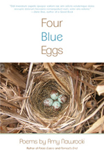Four_Blue_eggs-store