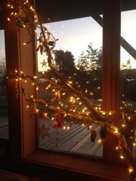 branch daylight